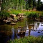 Duck-Creek-Aspen-Mirror-Lake-Version-2